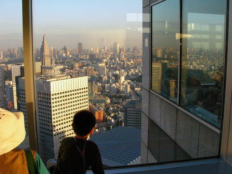 Blick vom TMG Südturm zur Tokyo-Bay