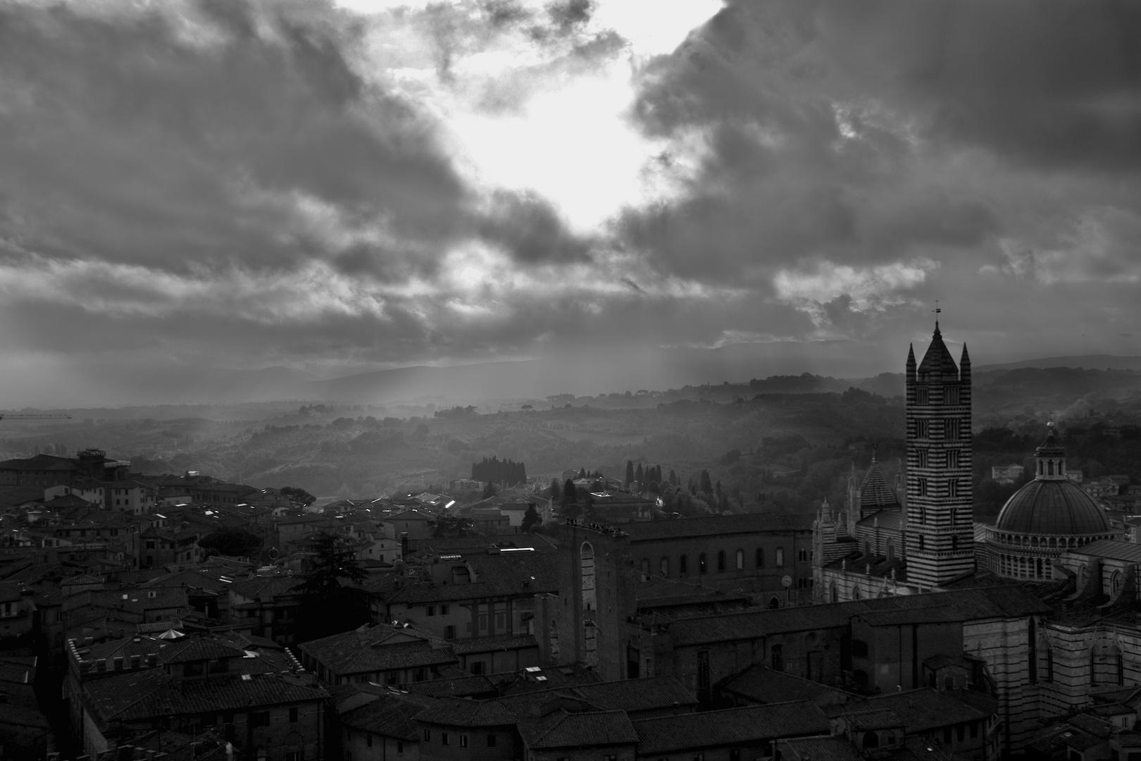 Blick vom Torre del Mangia