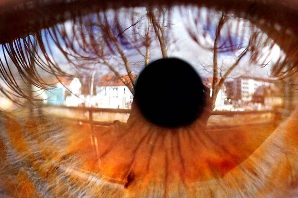 Blick von Balkonien (FB 180mm Makro)