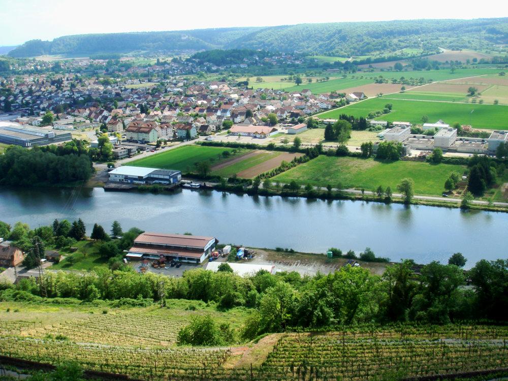 Blick von Burg Hornberg auf den Neckar