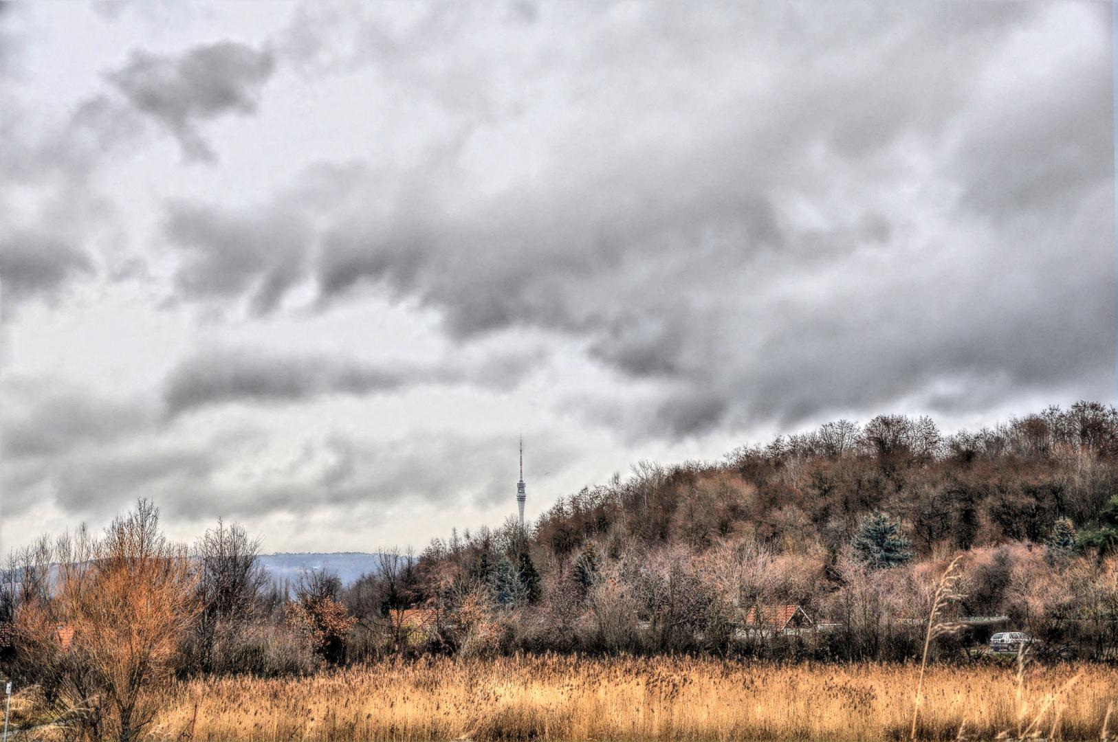 Blick von der Kiesgrube Leuben in Richtung des Frensehturms