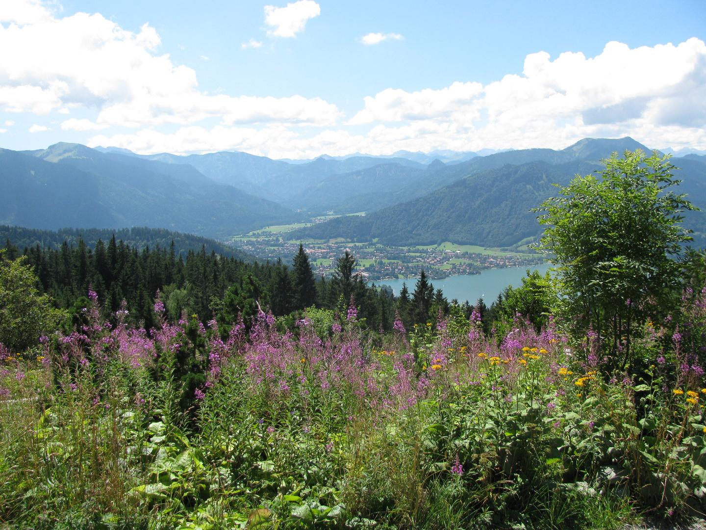Blick von der Neureuth