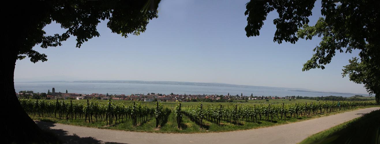 Blick von der Wilhelmshöhe auf Hagnau und den Bodensee