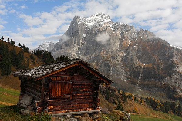 Blick von Grindelwald-Bort auf das Wetterhorn