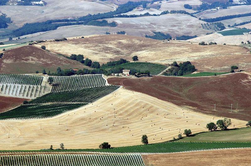 Blick von Montalcino ins Land