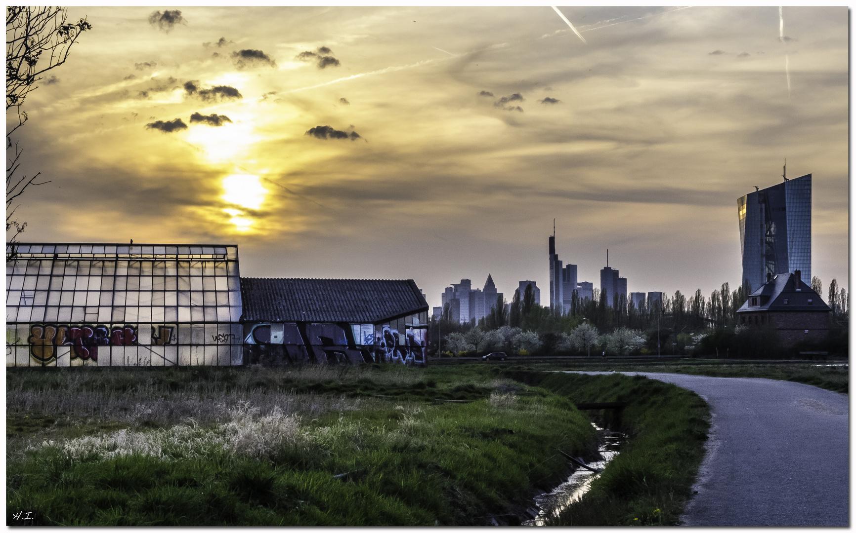 Blick von Oberrad auf die Skyline Ffm