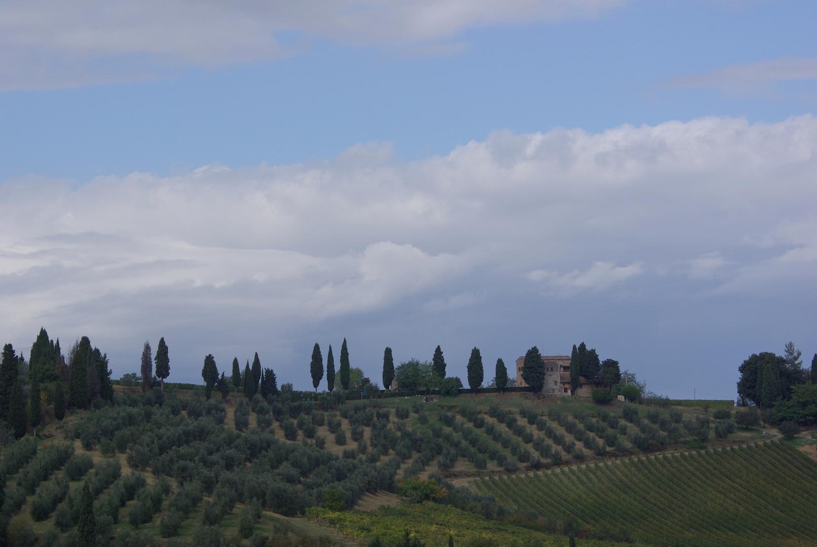 Blick von San Gimignano