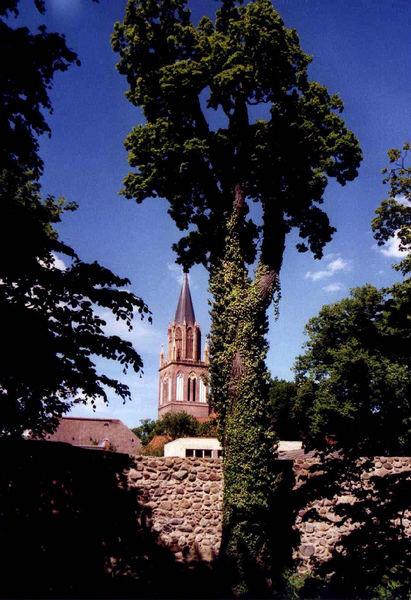 Blick zu Marienkirche