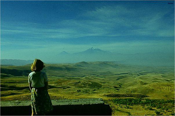 Blick zum Ararat...