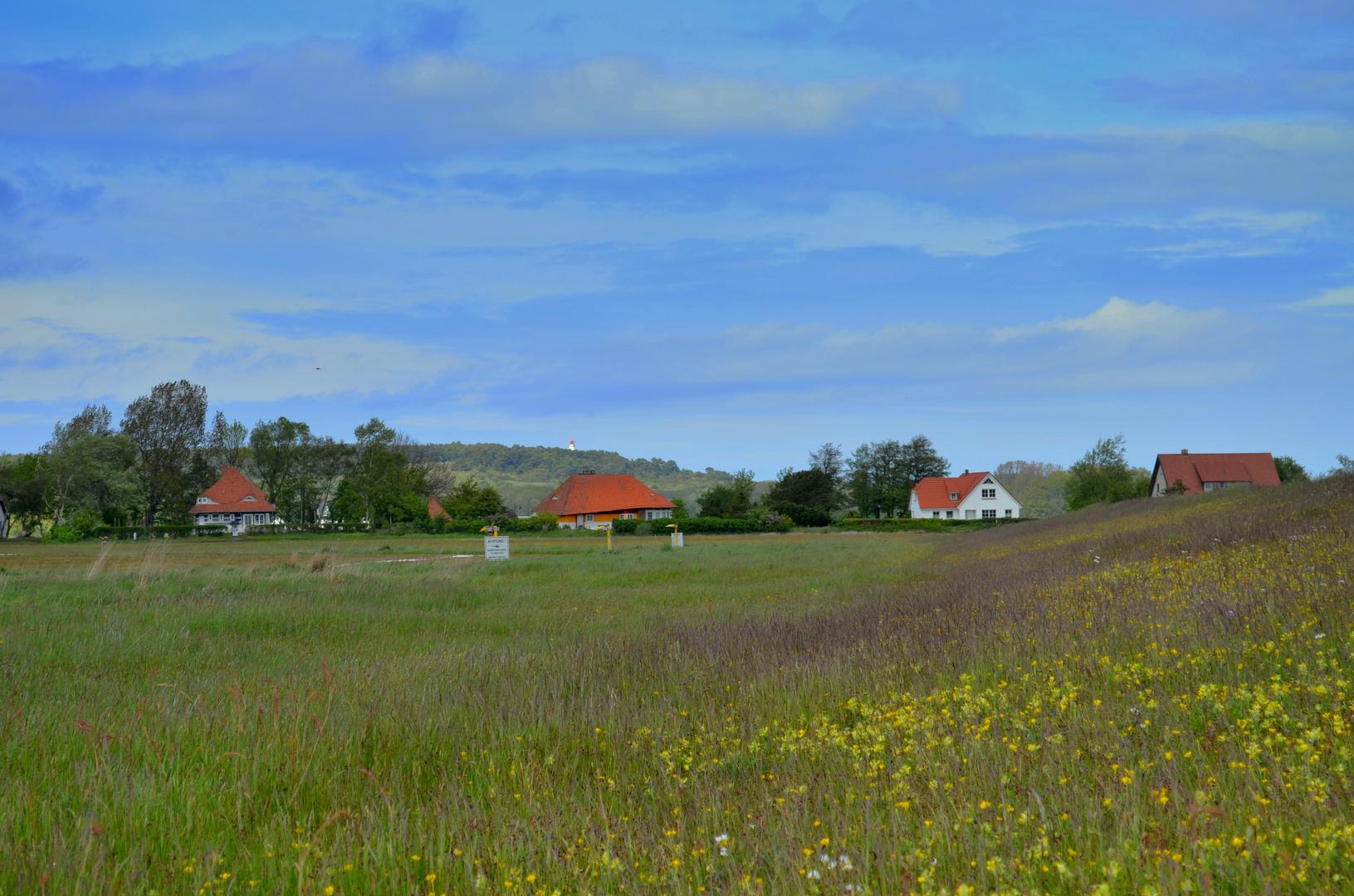 Blick zum Dornbusch