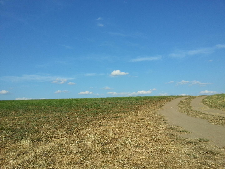 Blick zum Hügel