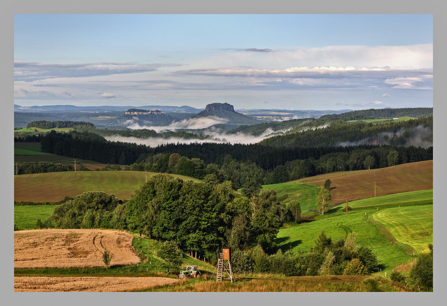 Blick zum Lilienstein und Festung Königstein