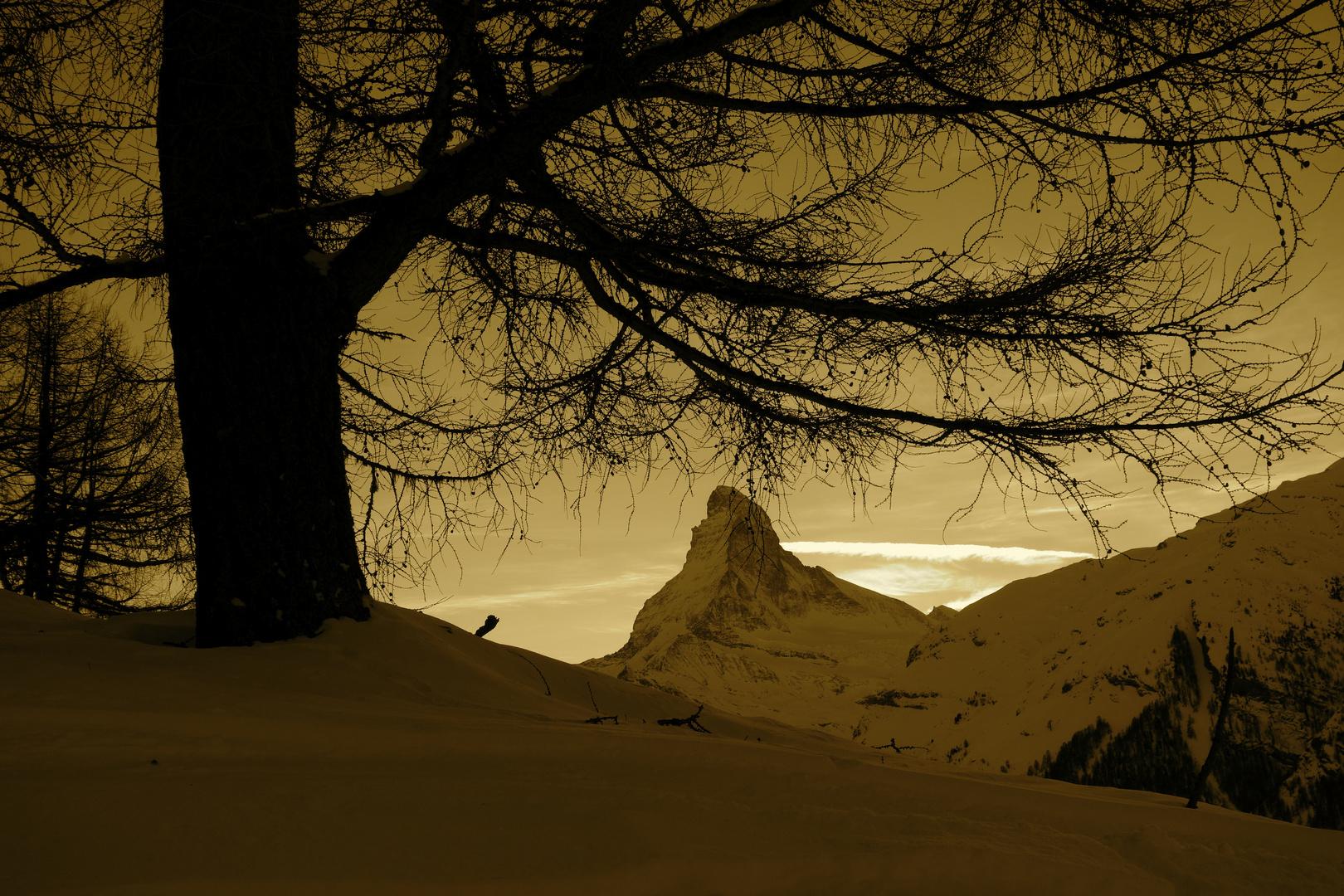 Blick zum Matterhorn!