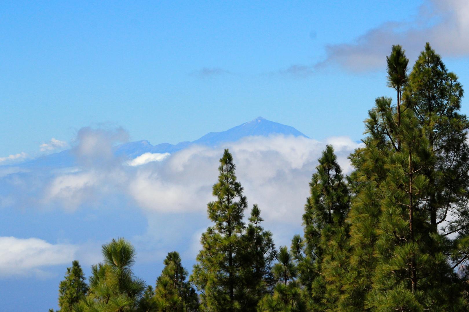 Blick zum Pico del Teide