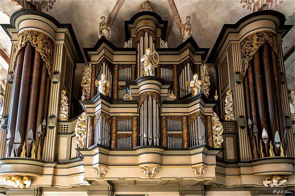 Blick zur Orgel........