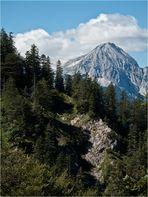 Blick zur Wettersteinspitze