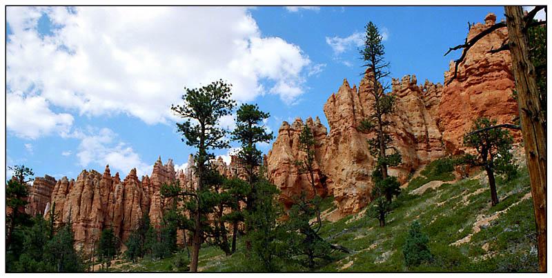 Blick zurück im Bryce Canyon - Utah, USA