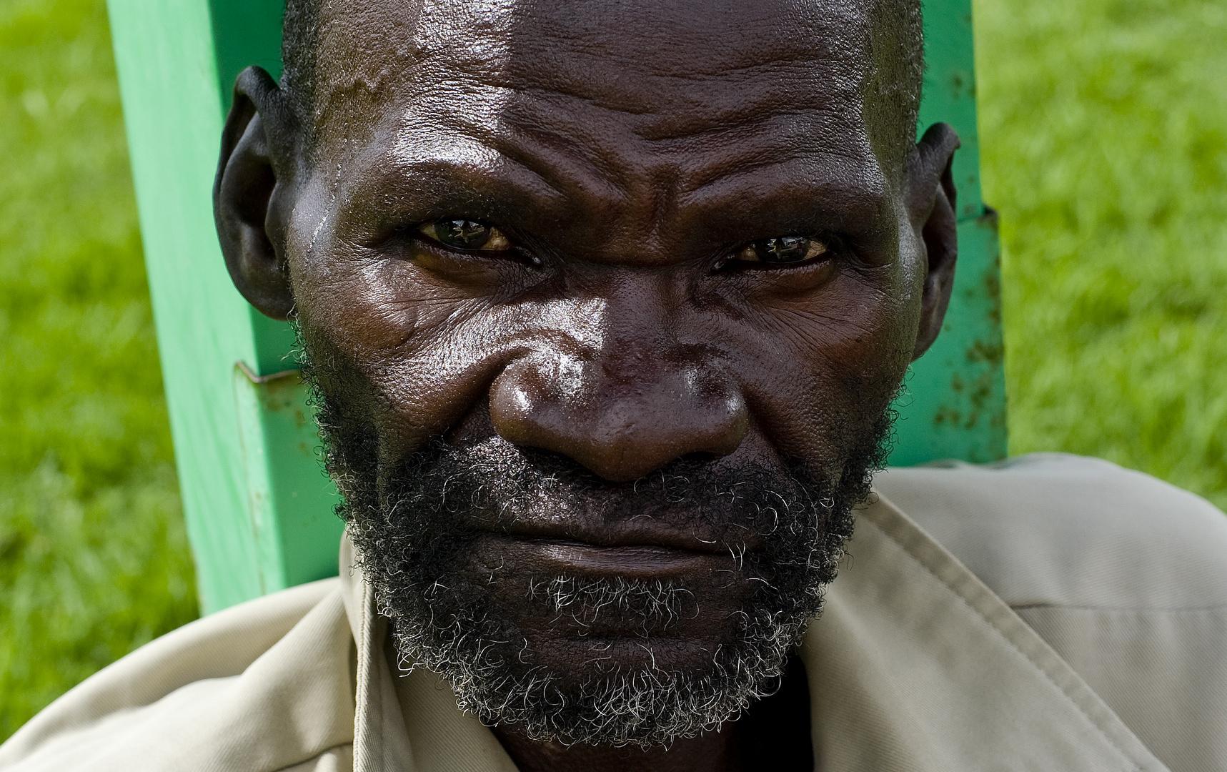 Blicke aus Afrika Nr. 14