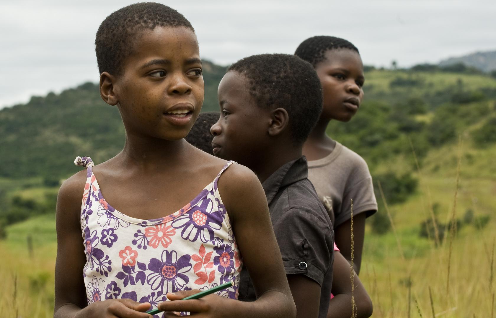 Blicke aus Afrika: Swaziland Nr.3