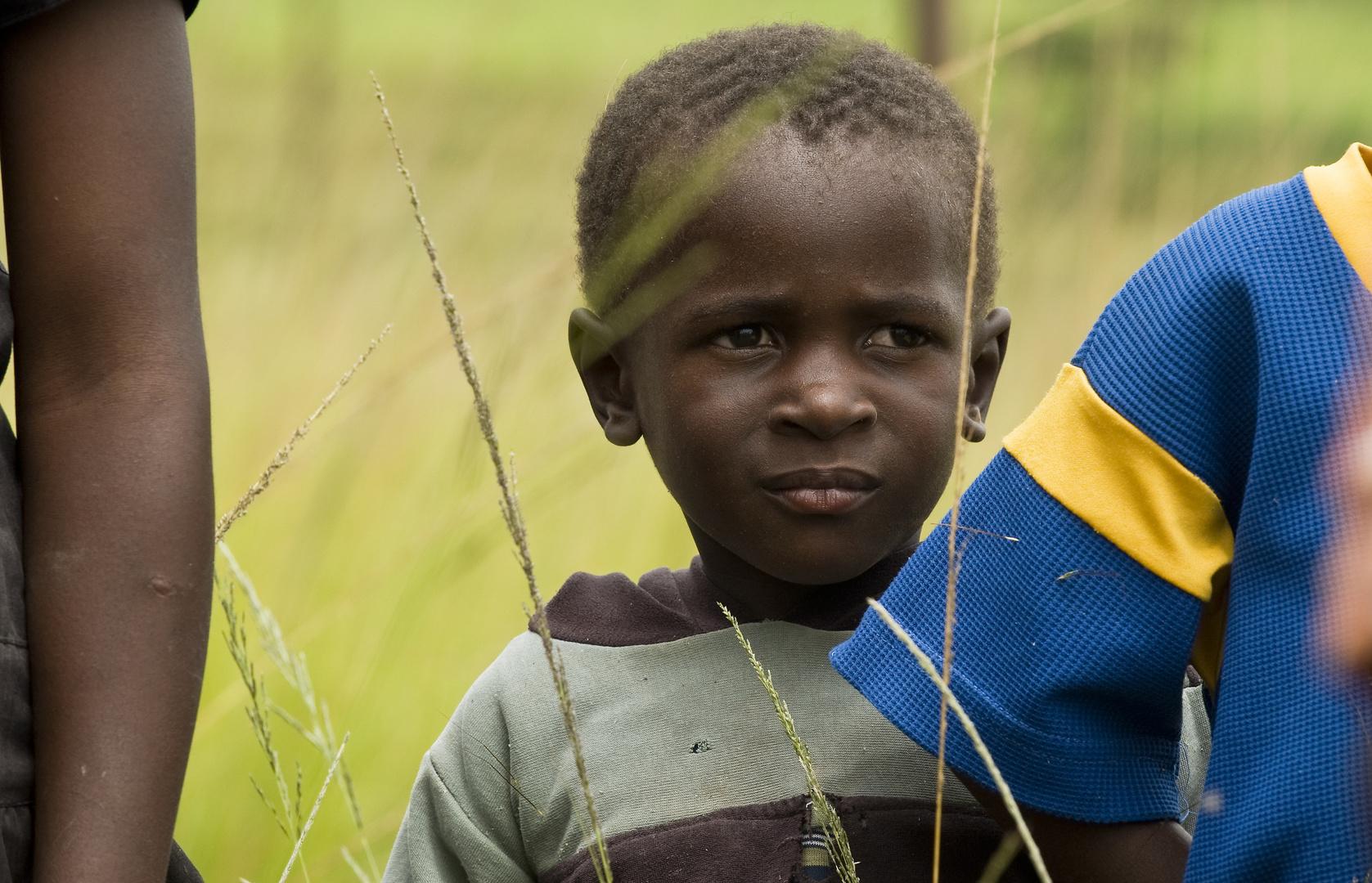 Blicke aus Afrika: Swaziland Nr.5