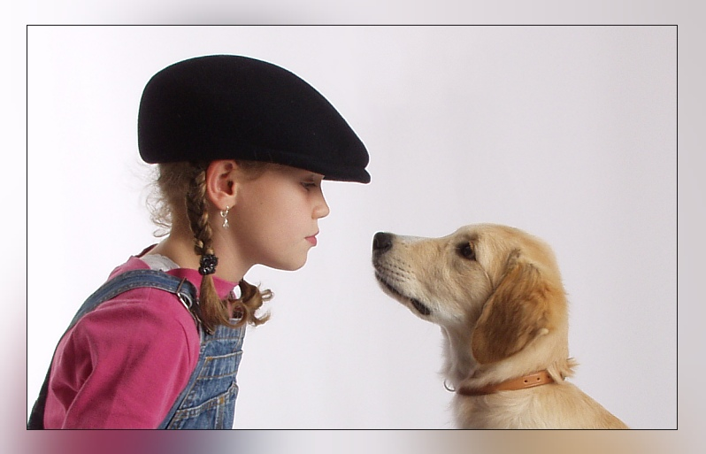http://img.fotocommunity.com/blickkontakt-6589eff2-1f92-4f34-895f-a57dc6626ef2.jpg?width=1000