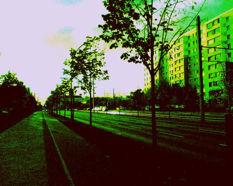 blind alley^