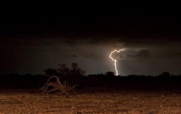 Blitz am Wasserloch