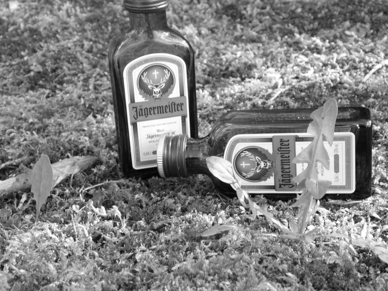 Blödsinn 2 Jäger im Wald