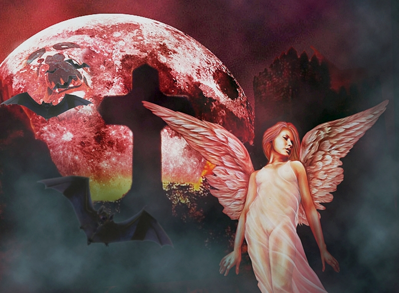 Bloody Moon and Bloody Angel
