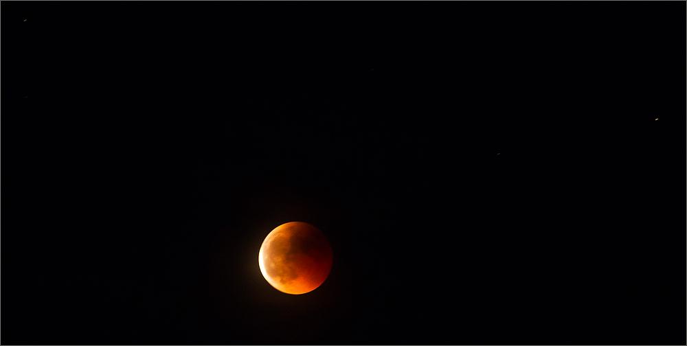 Bloody Moon over Blackforest
