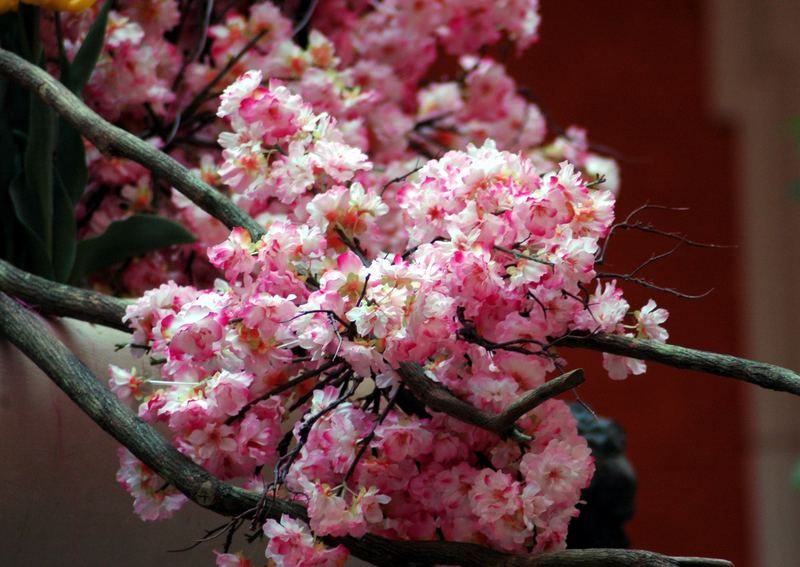 Blossom By Bellagio