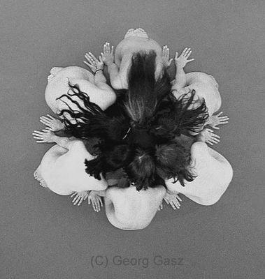 blossoms-af22mini