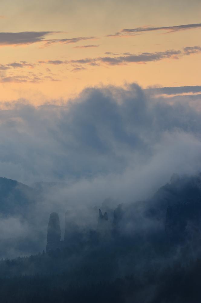 Blosstock im Nebel