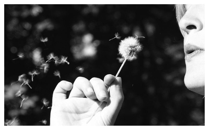 blow ´ in away.....