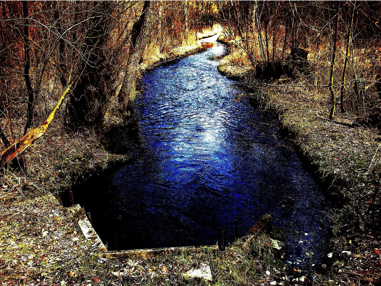 Blue Brook