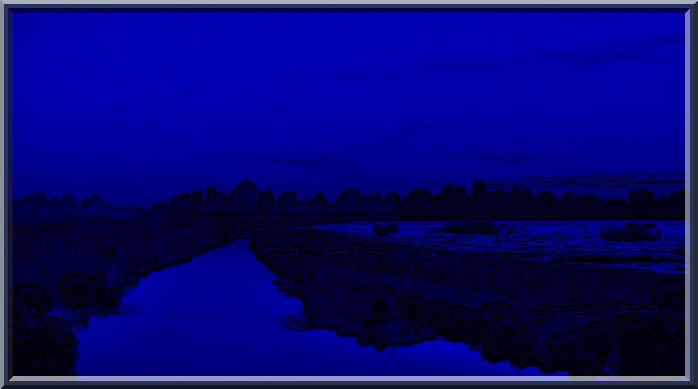 Blue Fields
