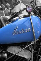 blue indian
