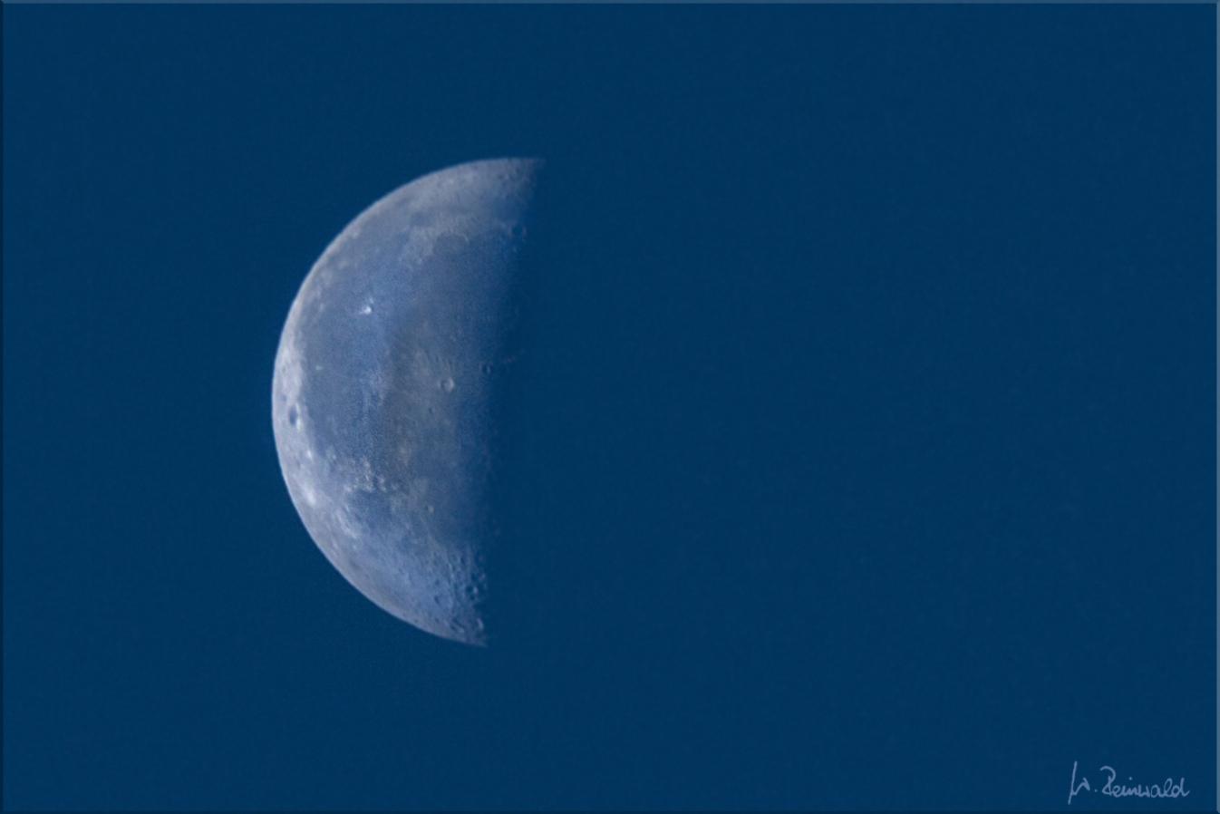 Blue Moon ...........