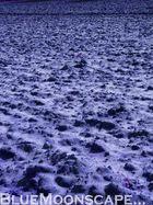Blue Moonscape...