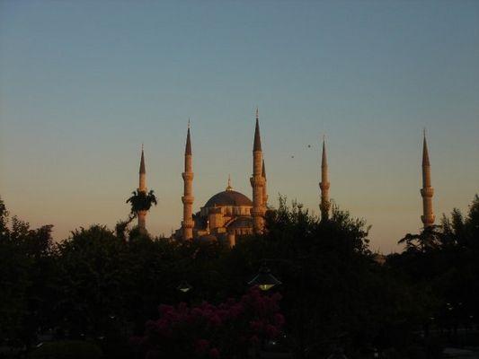 blue moschee