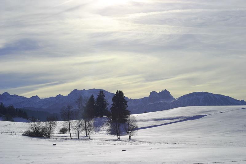 *** Blue Mountains ***