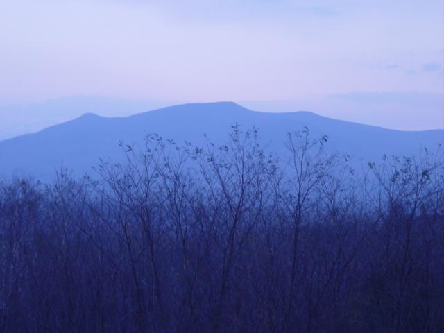 Blue Mtns.