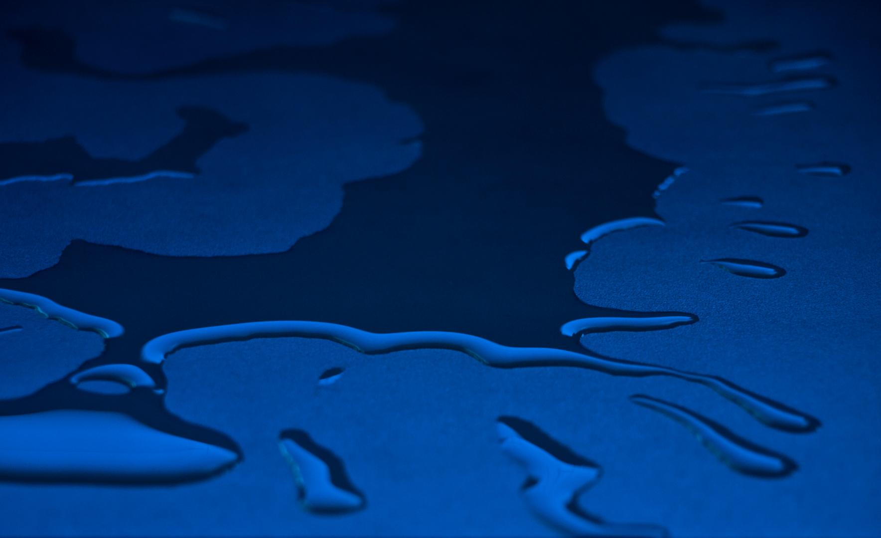 blue Schwapp