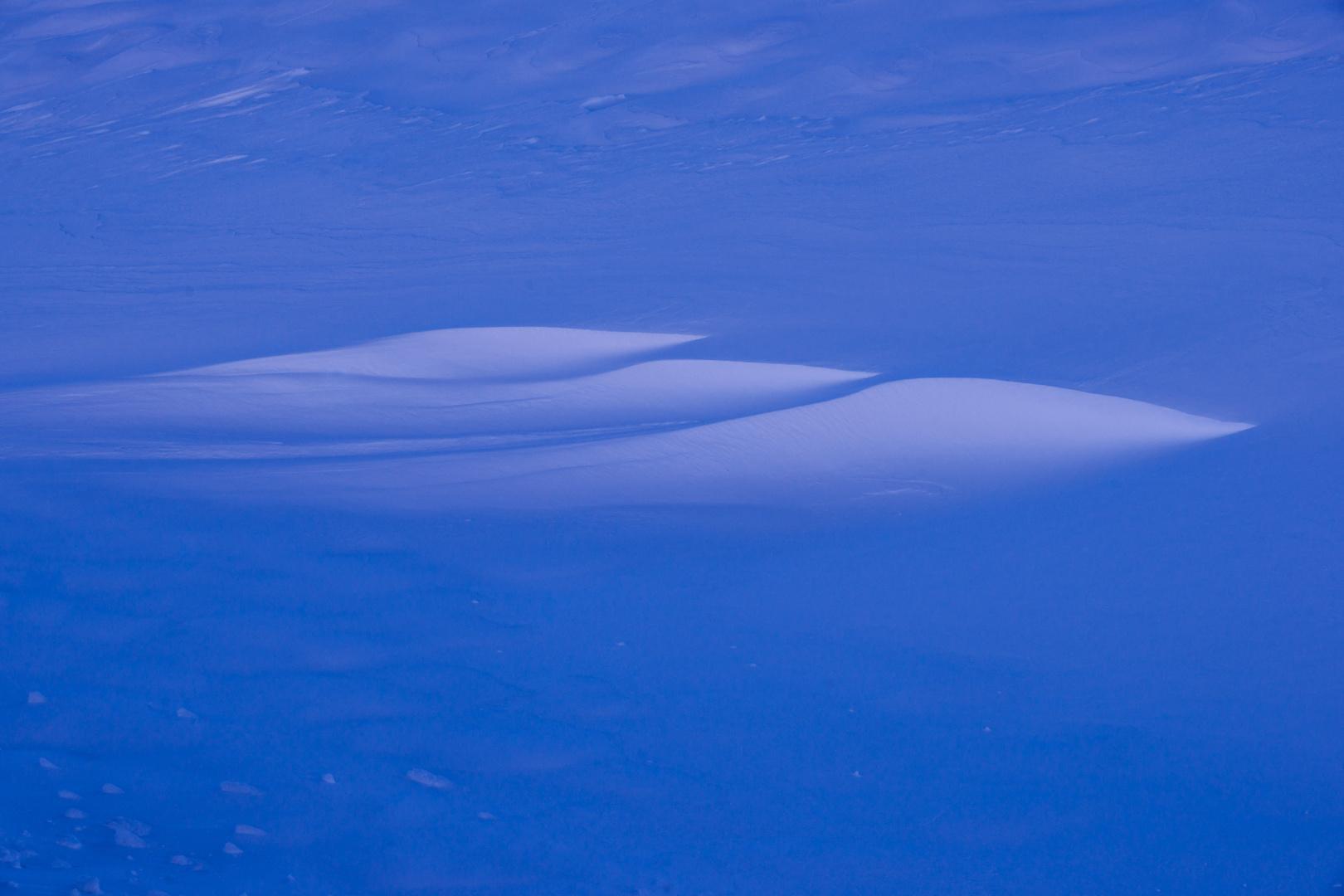 . . .Blue- Snow . . .