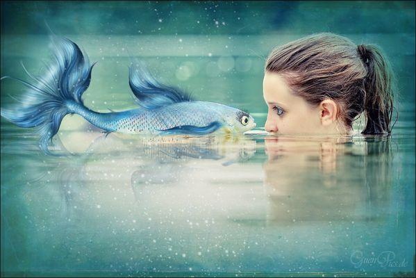 """"""" blue trout """""""