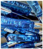 blue vesicles