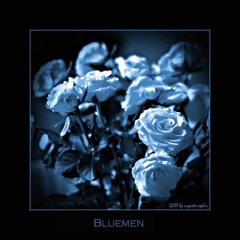 ---- bluemen -----