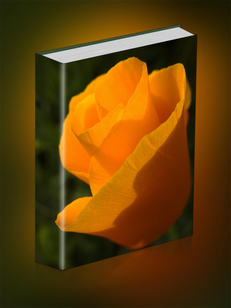 Blüte zum Sonntag in Buchform