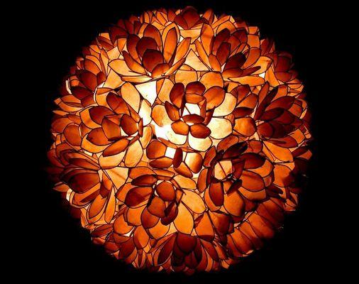Blüten des Lichts
