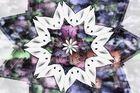 Blüten / Fantasy